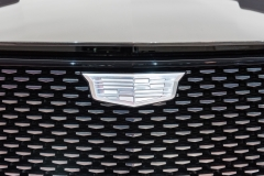 Cadillac Logo on Escala Concept 02
