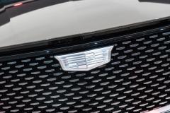 Cadillac Logo on Escala Concept 03