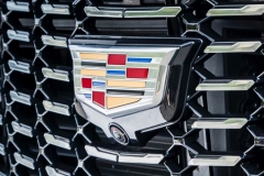 2019 Cadillac XT4 Premium Luxury - Exterior - Seattle Media Drive - September 2018 046 - grille with Cadillac logo