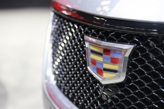 2020 Cadillac CT5 350T Sport - 2019 New York Internation Auto Show Live - Exterior 010 Cadillac logo