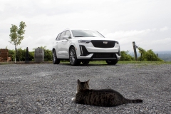 2020-Cadillac-XT6-Sport-Exterior-XT6-Drive-Winery-001-front-three-quarters-with-cat