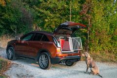 2021-Cadillac-XT4-Sport-Europe-Exterior-038-rear-three-quarters-trunk-open-dog